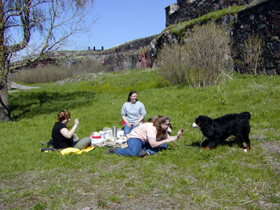 piknikillä Suomenlinnasa