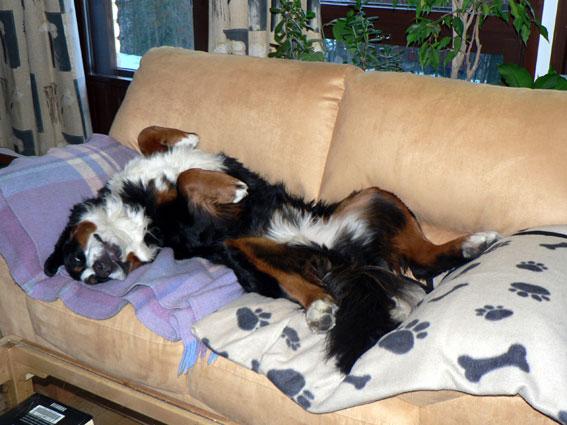 tää on mun sohva